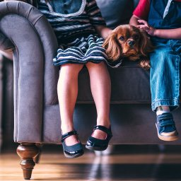 HELP! The Kids Stained the Sofa