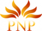 PNP Cleaning Service